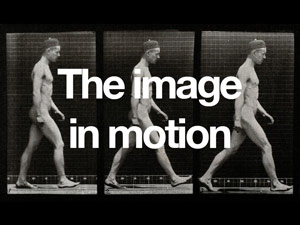 The image in motion