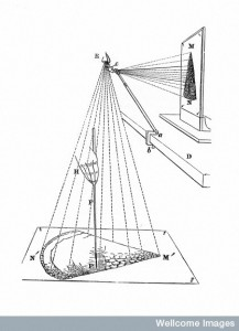 The Camera Lucida in use for microscopical drawings