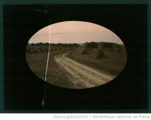 Chemin de terre entre champs moissonnés dans un cadrage ovale